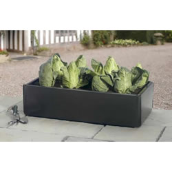 Small Image of Mini Raised Bed - Special Offer Pack of 2