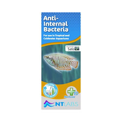 Small Image of NT Labs Aquarium Anti-Internal Bacteria 100ml