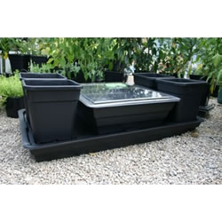 Small Image of Patio Allotment Planter with Propagator Lid