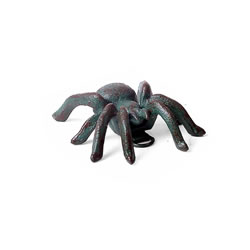 Small Image of Small Wall Mountable Cast Iron Verdigris Tarantula Spider Ornament