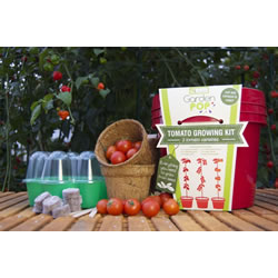 Small Image of GardenPop Tomato Growing Kit - With Seed Propagator