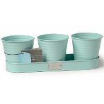 Small Image of Sophie Conran Herb Pots on a Tray - Blue