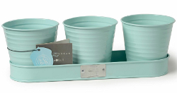 Image of Sophie Conran Herb Pots on a Tray - Blue