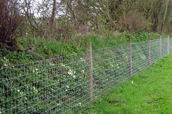 Image of 50m roll of L8/80/15 wire fence - ideal for gardens and dog proofing etc