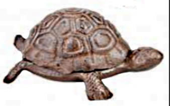 Image of Iron Tortoise