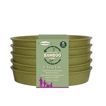 Image of Haxnicks Sage Green 15cm Bamboo Plant Saucers Biodegradable Compostable (Pack of 15)