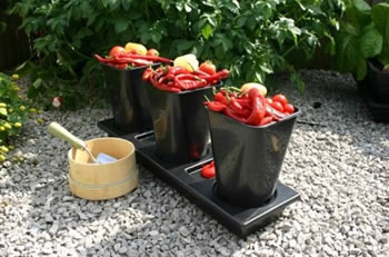 Image of Chilligrow Chilli Planter x2