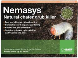 Image of Nemasys Chafer Grub Killer 100sq metres