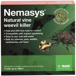 Image of Nemasys Vine Weevil Killer 100sq metres