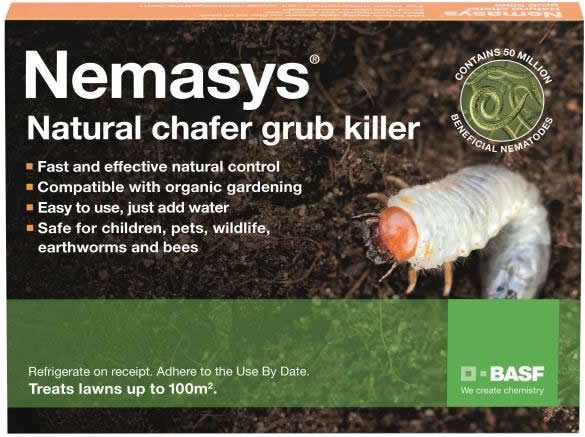nemasys chafer grub killer 500sq metres   104 99