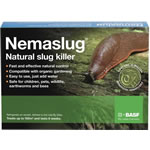 Image for Snail and Slug Traps