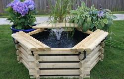 Image of Softwood 50 Gallon Pool with Fountain