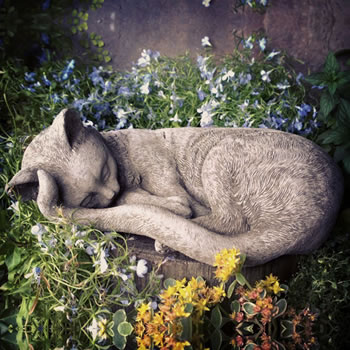 Image of Sleeping Kitten Stone Garden Ornament