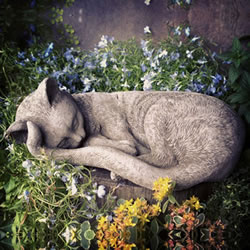 Small Image of Sleeping Kitten Stone Garden Ornament