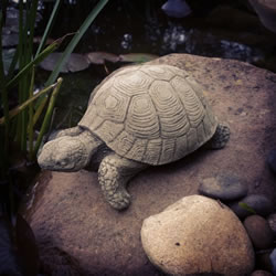Small Image of Small Stone Tortoise Ornament