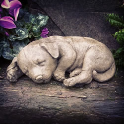 Small Image of Sleeping Puppy Stone Ornament