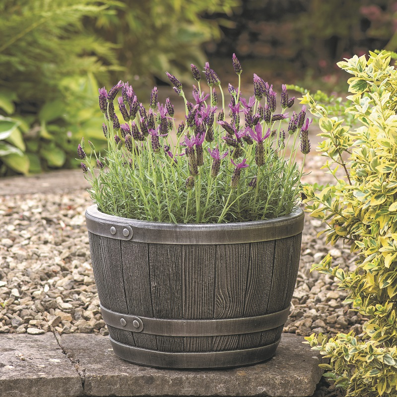 Barrel Planter as Pond