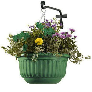 Image of Corinthian Hanging Basket - Dark Green