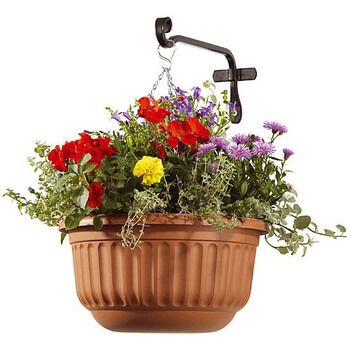 Image of Corinthian Hanging Basket - Terracotta
