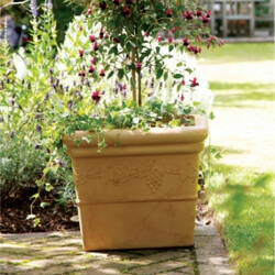 Small Image of Grapes Sandstone Effect Square Garden Planter - 47 cm