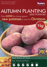 Autumn Planting Seed Potatoes - Red Duke of York