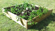 Image of Apollo Square Raised Bed 100cm x 100cm x 15cm