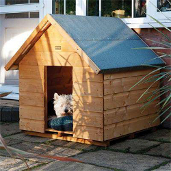 Image of Medium Dog Kennel
