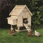 Small Image of Small Softwood Chicken Coop