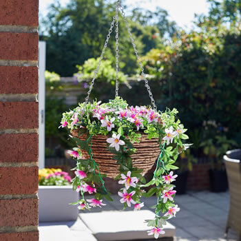 Image of Easy Basket - Star Gazing Lilies - Hanging Basket