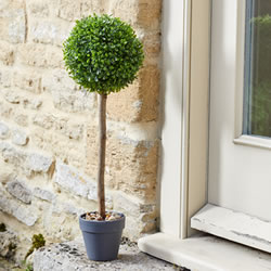 Small Image of Uno Ball Topiary Tree - 40cm