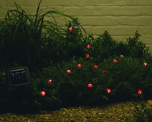 Image of Solar Powered Light Set - Ladybird