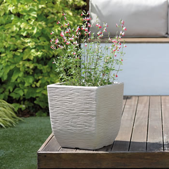Image of Cotswold Square Planter - 38cm
