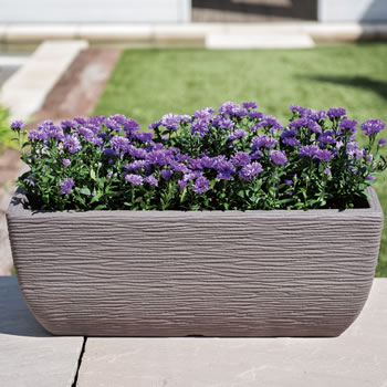 Image of Cotswold Trough Planter - 60cm - Limescale Grey