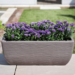 Small Image of Cotswold Trough Planter - 60cm - Limescale Grey