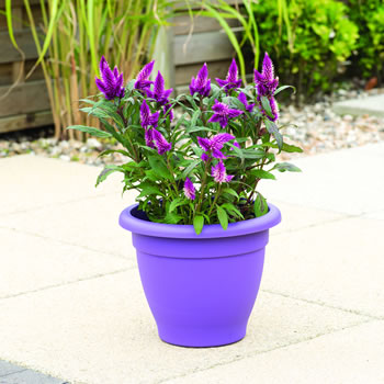 Image of Stewart 27cm Essentials Planter - Pack of Two - Dark Green