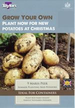 Autumn Planting Seed Potatoes - Maris Peer