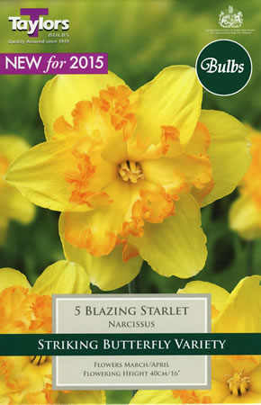 Image of Daffodil Blazing Starlet Bulbs -Butterfly Variety