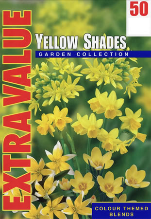 Image of Yellow Shades - Mixed Yellow Flower Bulbs