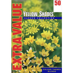 Small Image of Yellow Shades - Mixed Yellow Flower Bulbs