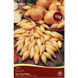 Small Image of 50 Onion Sets - Sturon (Spring Planting)