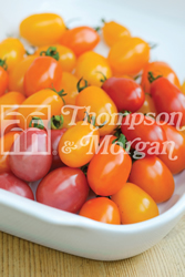 Image of Thompson and Morgan Tomato : Rainbow Blend F1 Hybrid