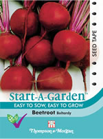 Small Image of Start a Garden Boltardy Beetroot Seeds
