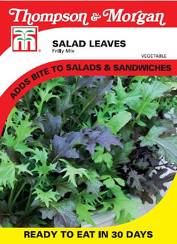 Image of Thompson and Morgan Salad Leaves : Frilly Mix Finished Packet