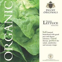 Image of Duchy Originals Dynamite Butterhead Lettuce Seeds