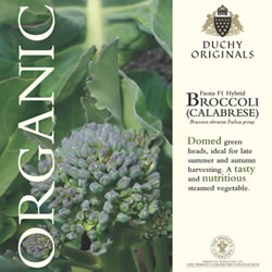 Image of Duchy Originals Fiesta F1 Hybrid Broccoli Seeds