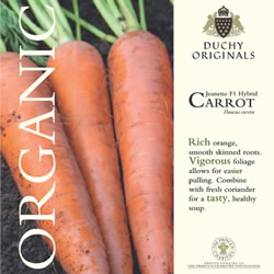 Image of Duchy Originals Jeanette F1 Hybrid Carrot Seeds