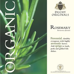 Image of Duchy Originals Rosemary Herb Seeds