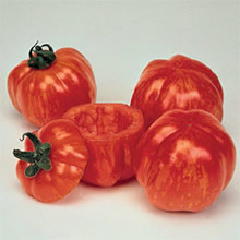 Image of Thompson and Morgan Heritage Collection Striped Stuffer Tomato Seeds