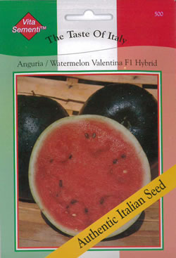 Image of Italian Anguria Valentina F1 Hybrid Watermelon seeds