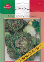 Small Image of Italian Quattro Stagioni Lettuce Seeds